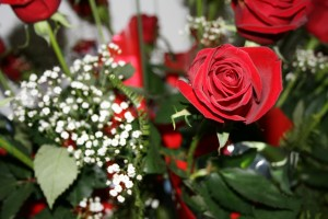 Red Rose and white babies breath